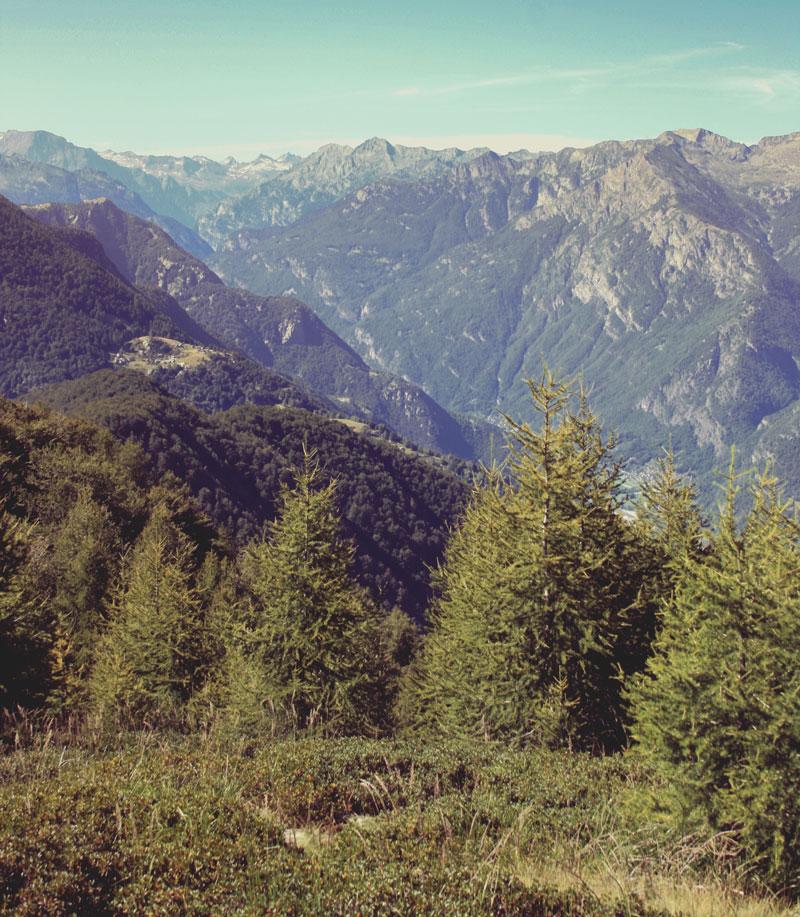 Monte Salmone, Tessin, Suisse