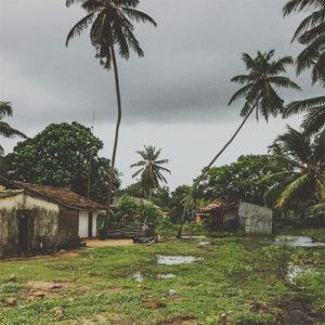 Carnet de voyage au Sri Lanka