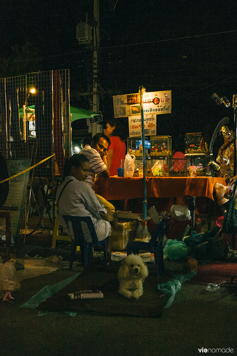 Night Bazaar de Chiang Rai