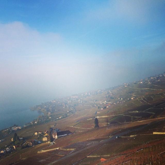 Lavaux sous un nuage, Suisse