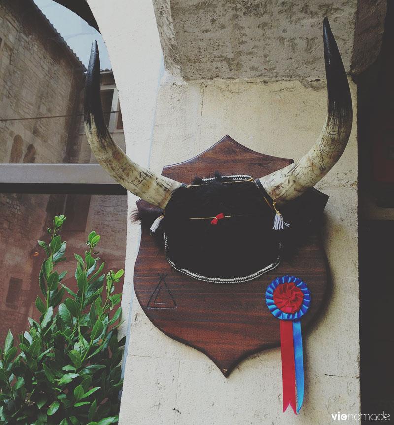 Les taureaux d'Arles