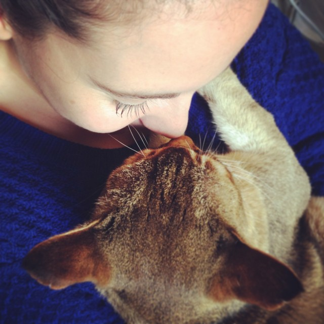 Cat-sitting Quintus