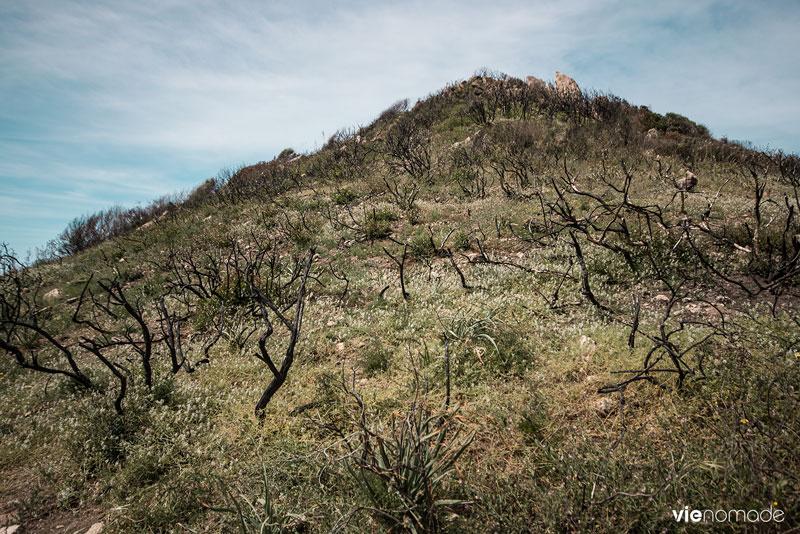 Randonnée sur le Sentier des Douaniers