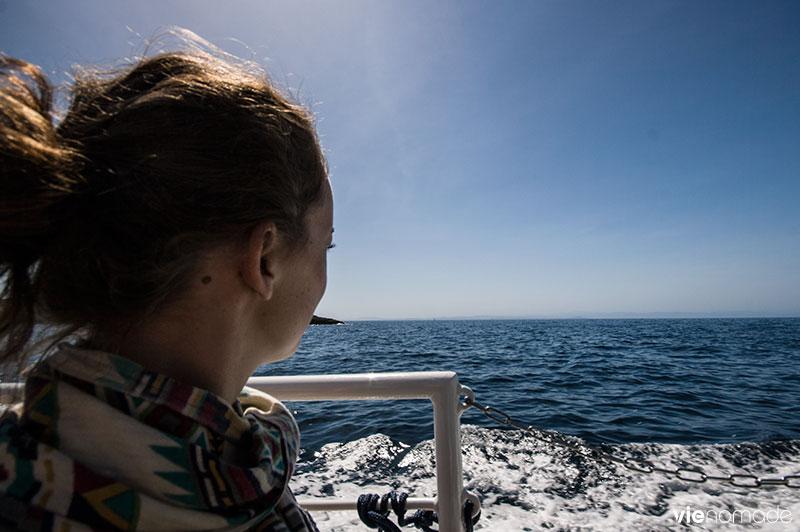 Balade en bateau à Bonifacio