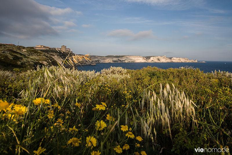 Bonifacio, Corse