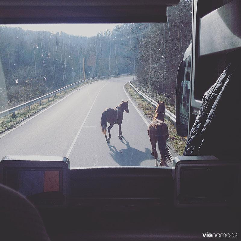 De la Bulgarie à Istanbul en bus