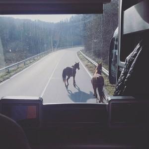 De la Bulgarie à Istanbul