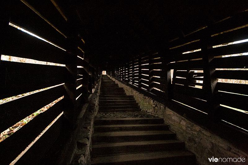 Sighisoara, les escaliers des écoliers (scara scolarilor)