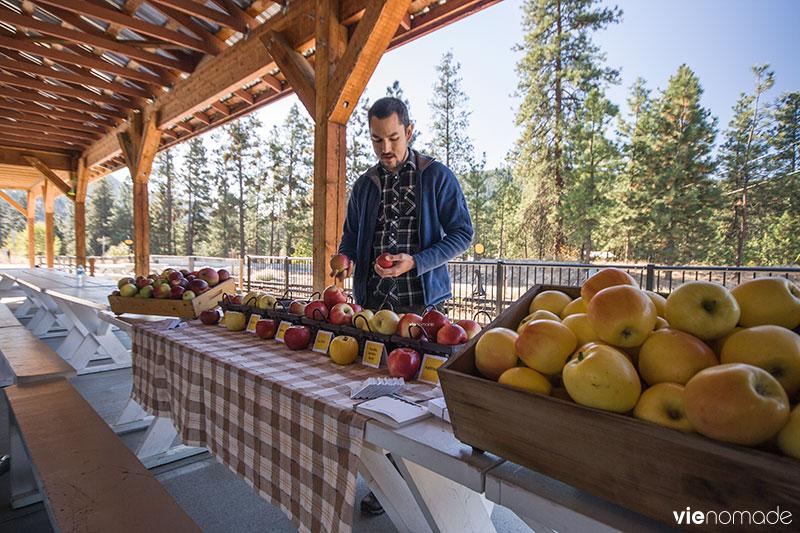 Pommes de la Vallée de l'Okanagan