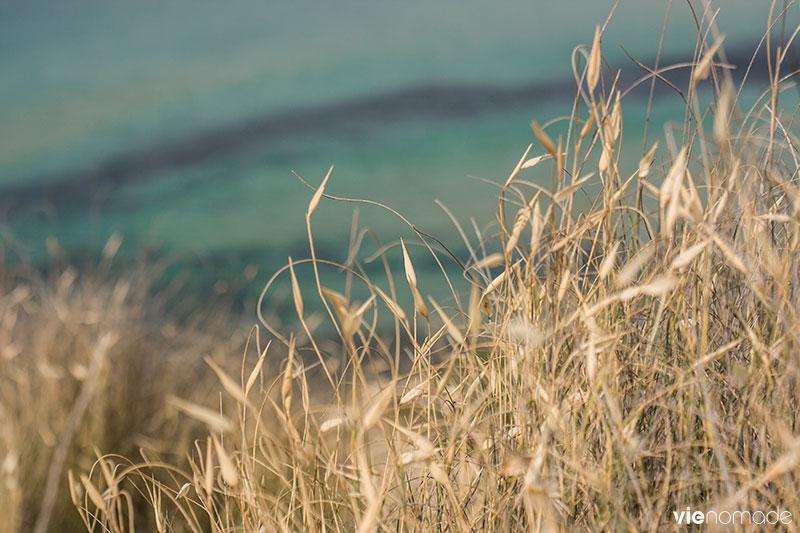 Ghajn Tuffieha, la plus belle plage de Malte