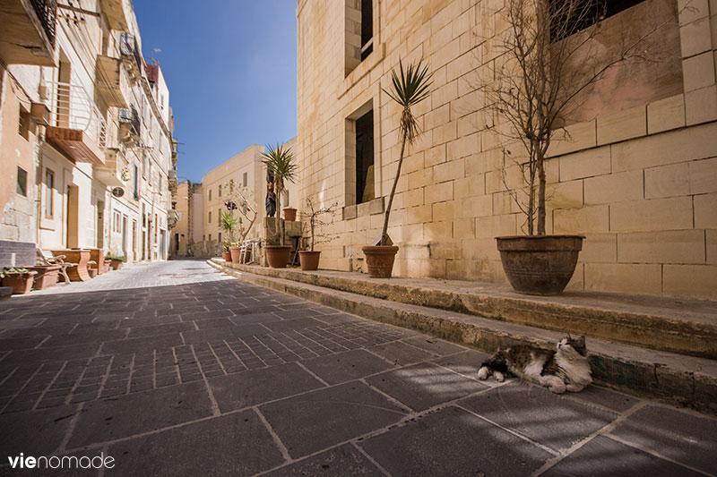 Birgu (Vittoriosa) Malte