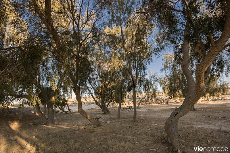 Road trip en Israël, vers Mitzpe Ramon