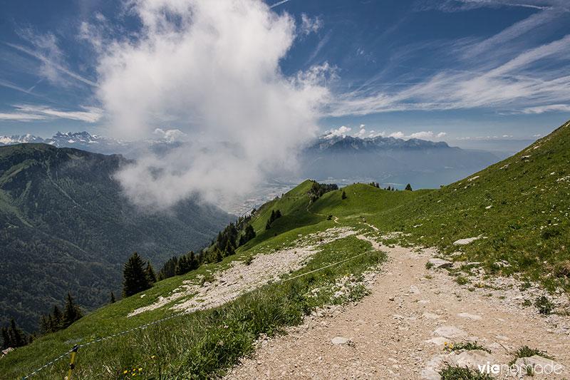 Randonnée aux Rochers de Naye, Suisse