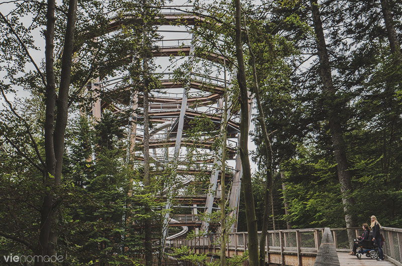 Baumwipfelpfad, la tour au-dessus de la Forêt-Noire