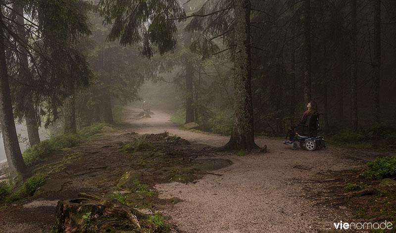 Forêt-Noire accessible au Mummelsee