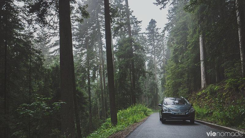 Road trip en Forêt-Noire