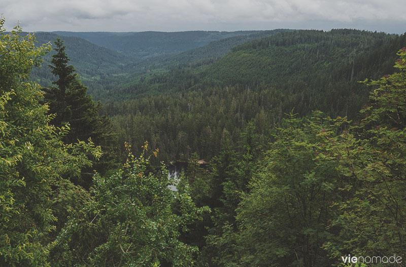 Randonnée en Forêt-Noire