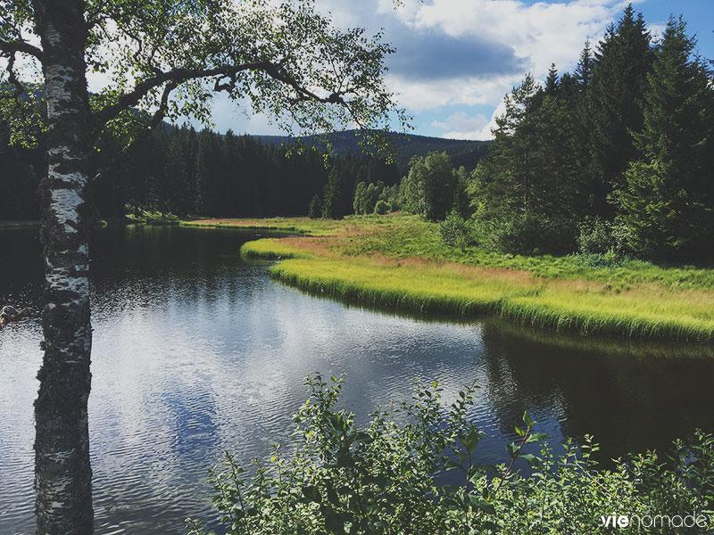 Randonnée autour du Schluchsee