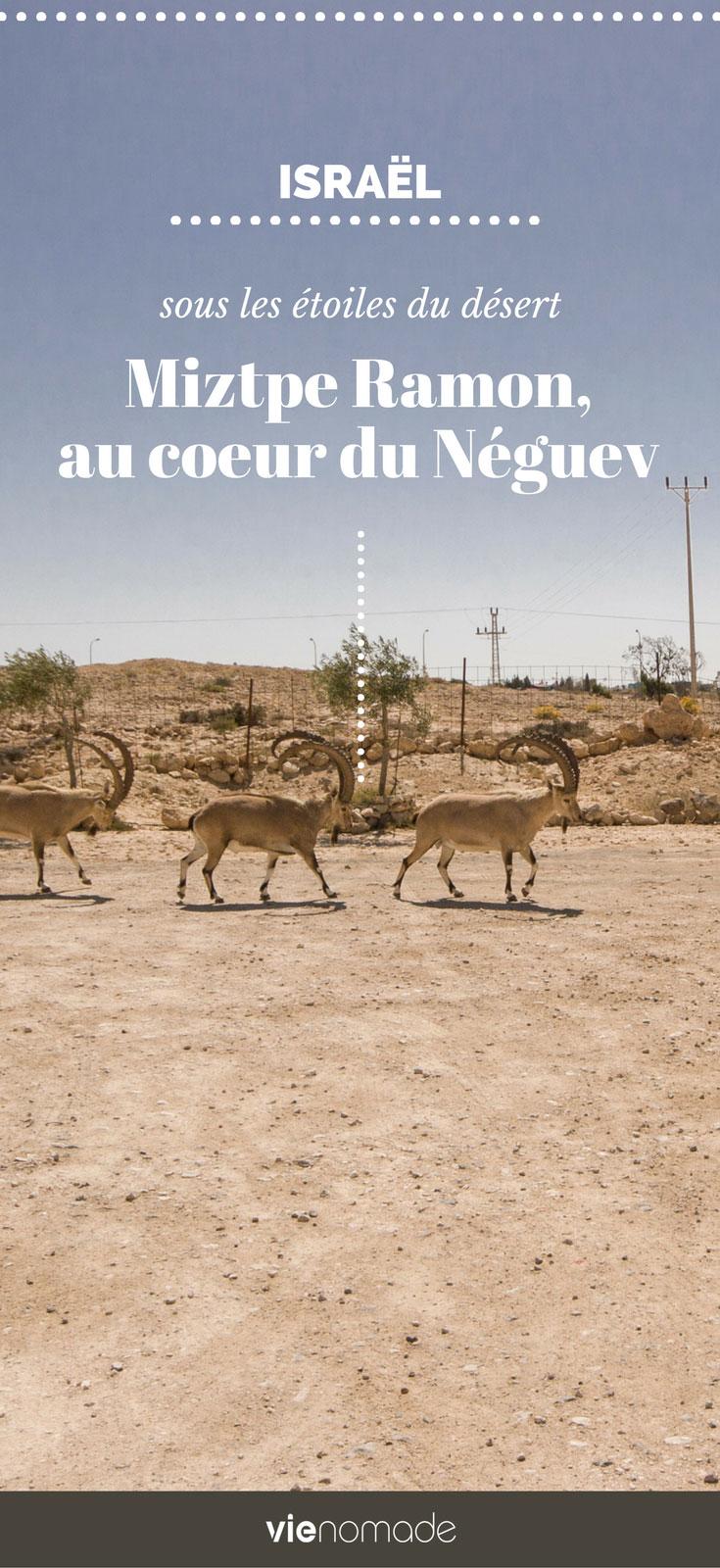 Voyage en Israël: dans le désert du Néguev à Mitzpe Ramon