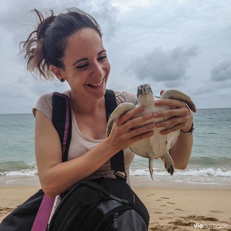 Relâcher les tortues marines en Thaïlande
