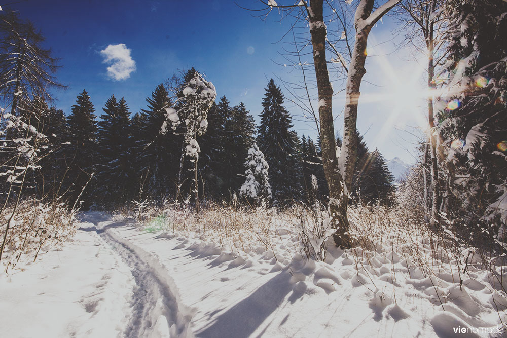 Gryon sous la neige