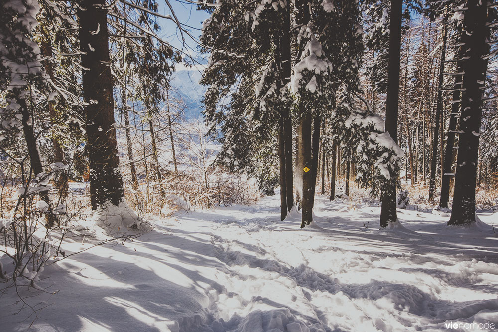 Marcher dans la neige à Gryon, Suisse