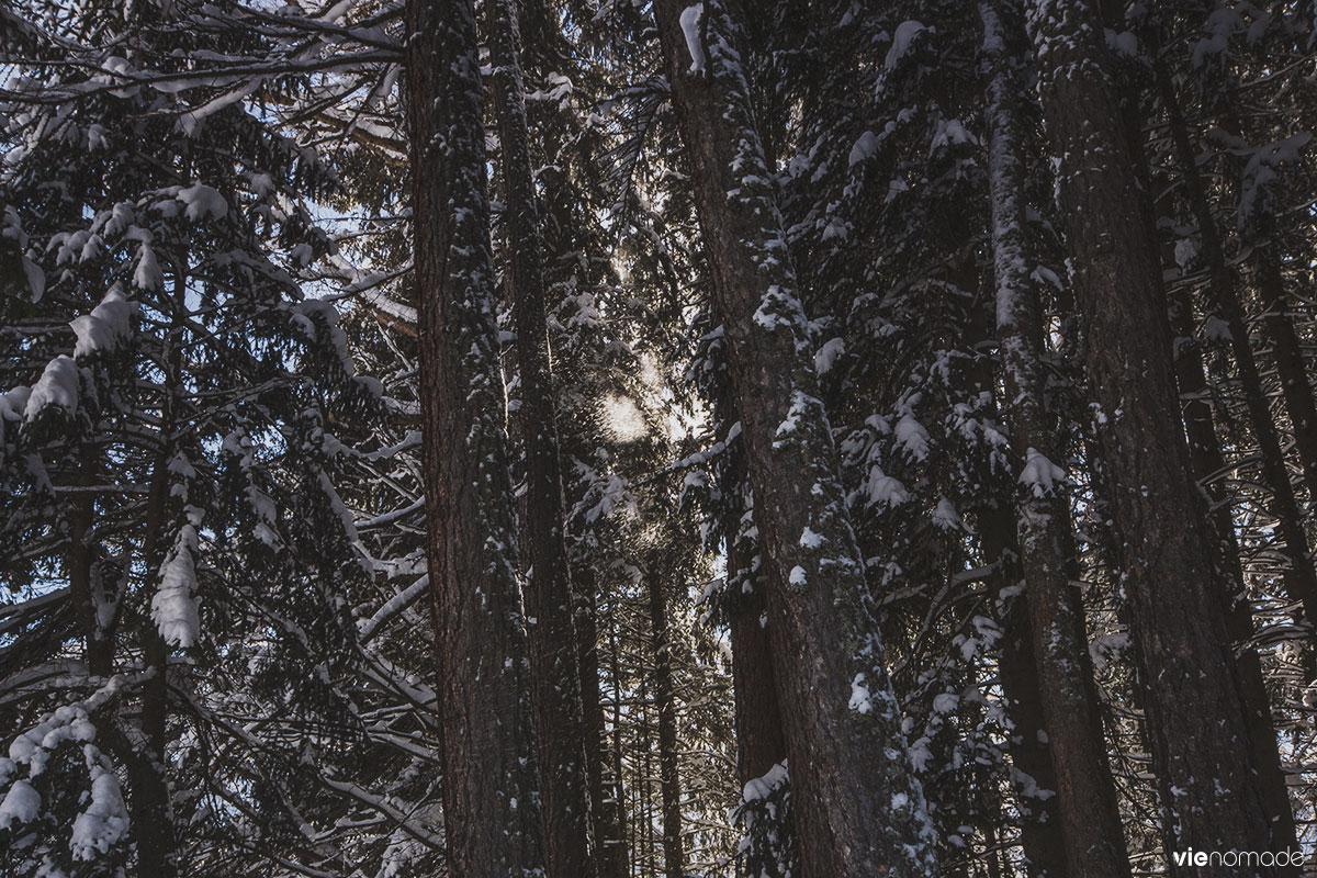 Balade dans la neige, en Suisse
