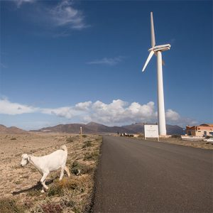 Road trip à Fuerteventura, Îles Canaries