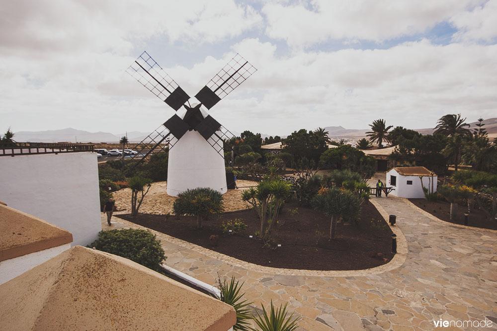 Musée du fromage à Antigua, Fuerteventura