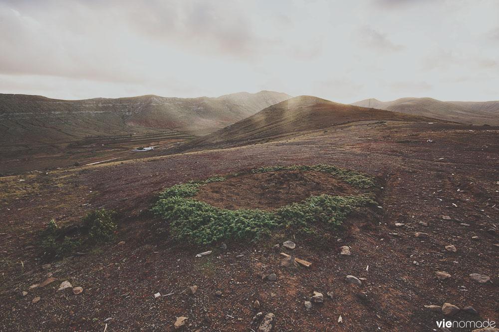 Randonnée sur la montagna Temejereque à Tetir