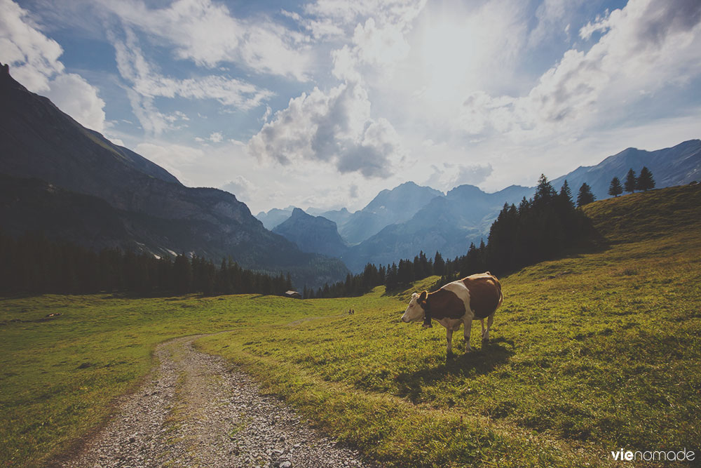 Balade en Suisse: région d'oeschinen