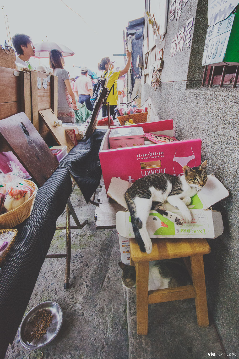 Houtong / Houdong, le village des chats