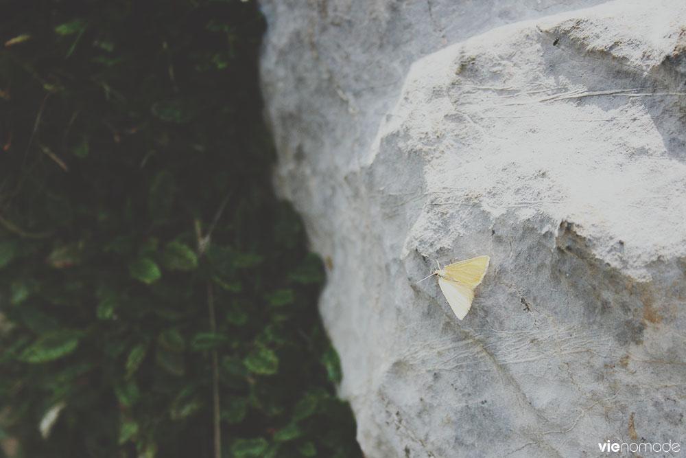 Randonnée au Col des Chamois