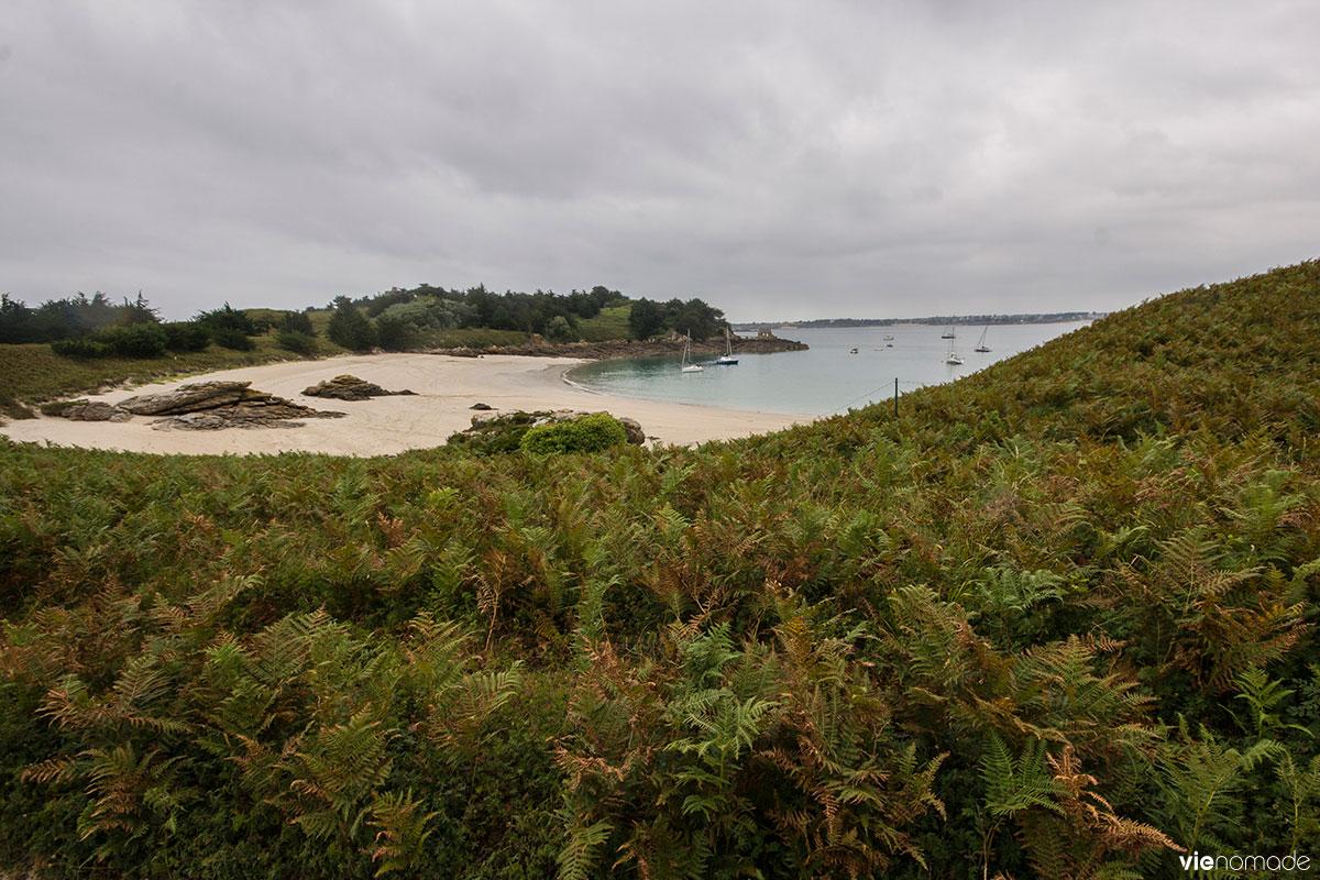 Découvrir l'archipel des Ebihens en voilier