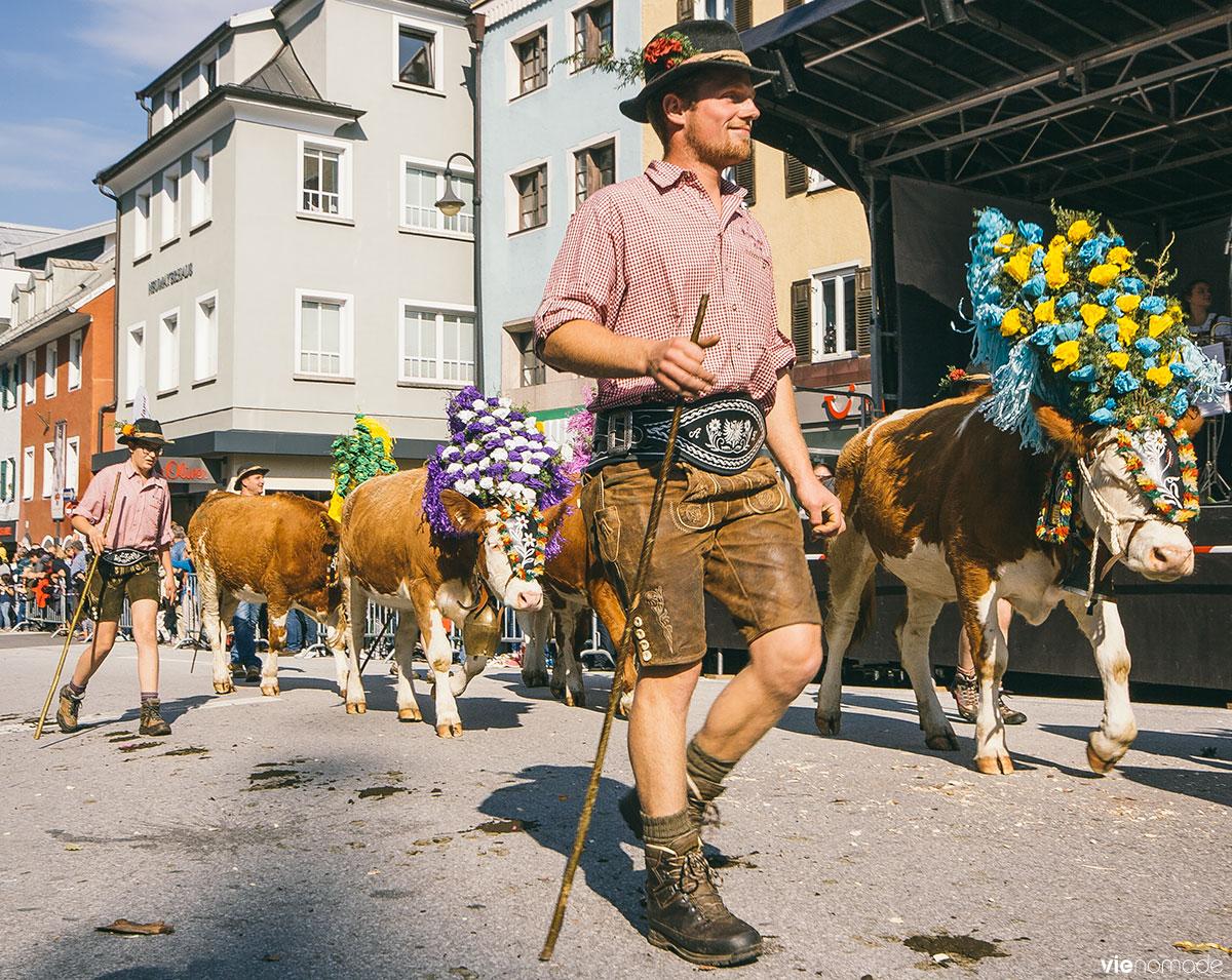 L'almabtrieb, la descente des vaches des alpages