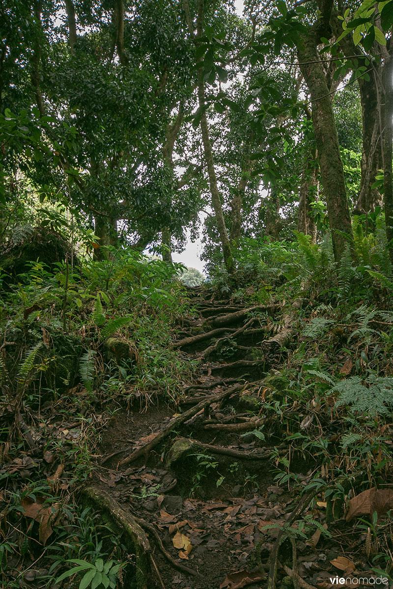 Cascade de la Fautaua, Tahiti
