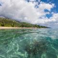 Carnet de voyage Tahiti et Moorea