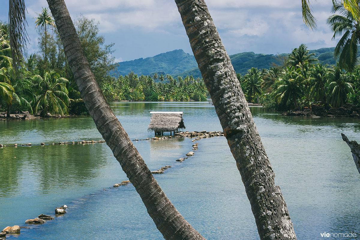 Piège à poissons traditionnel à Huahine, Polynésie Française