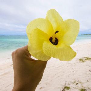 Voyager aux Îles Cook