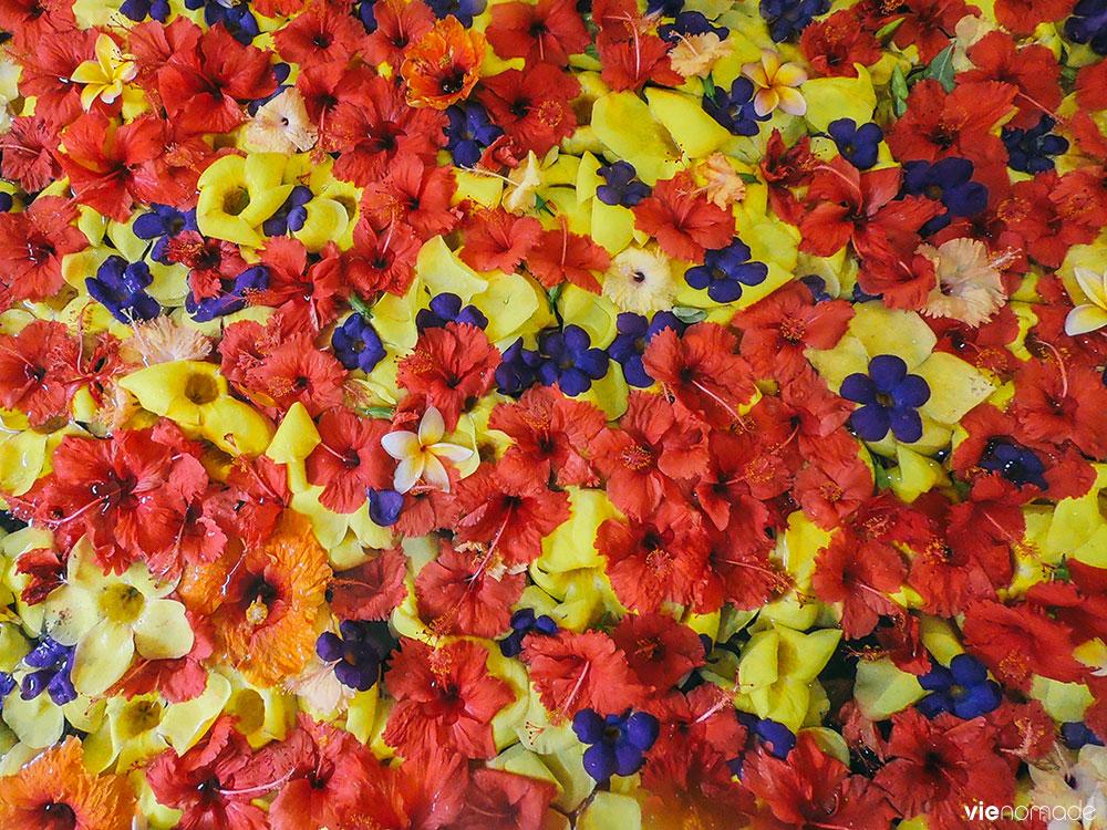 Bain de fleurs au Helene Spa à Moorea