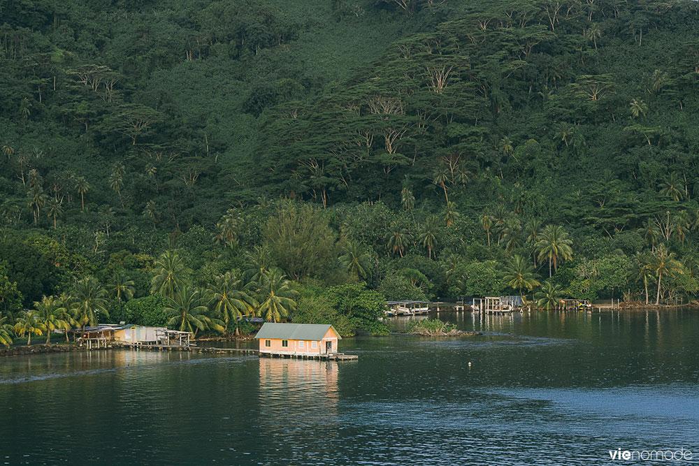 Raiatea, Polynésie Française