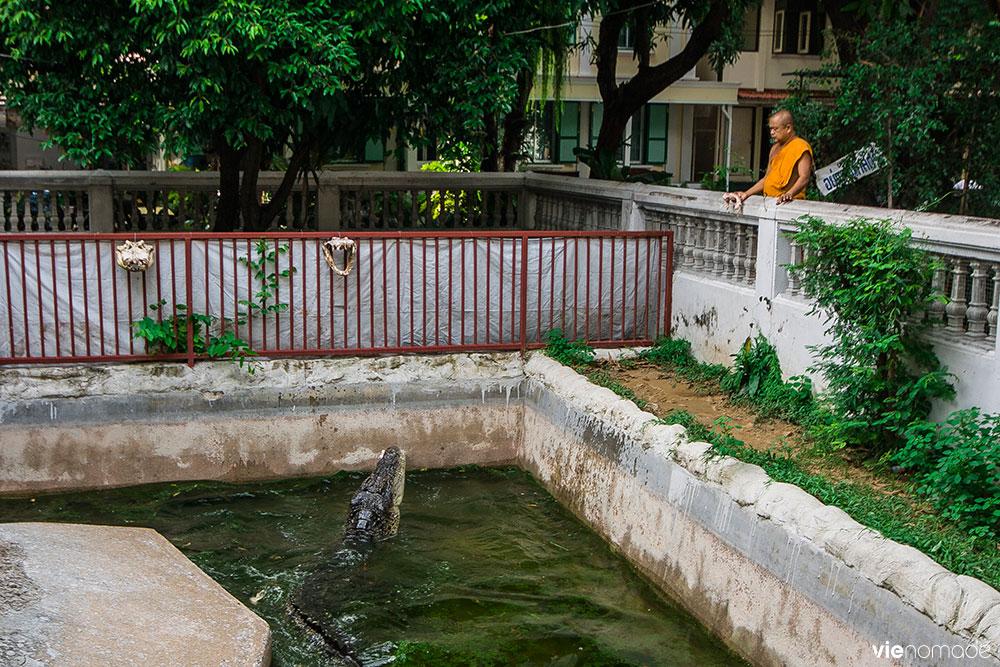 Wat Chakrawat, le templs aux crocodiles de Bangkok