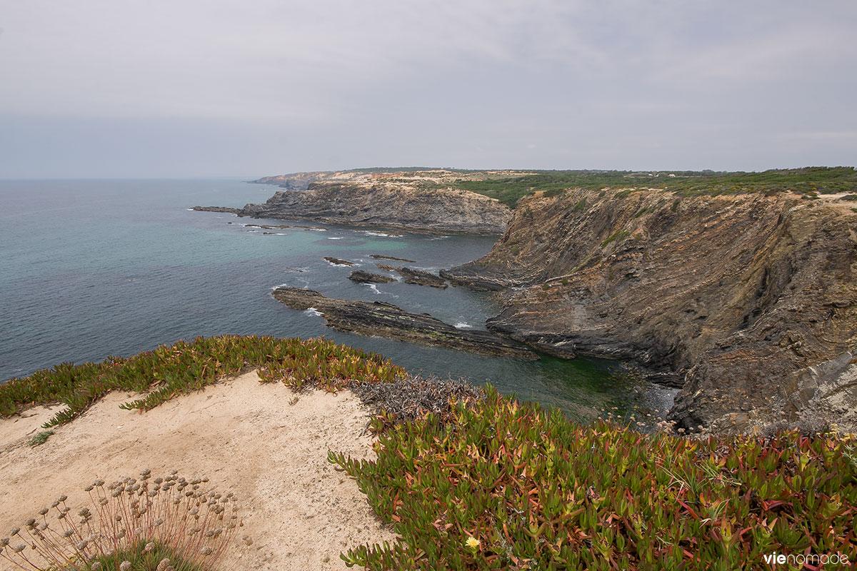 Cabo Sardao et ses cigognes