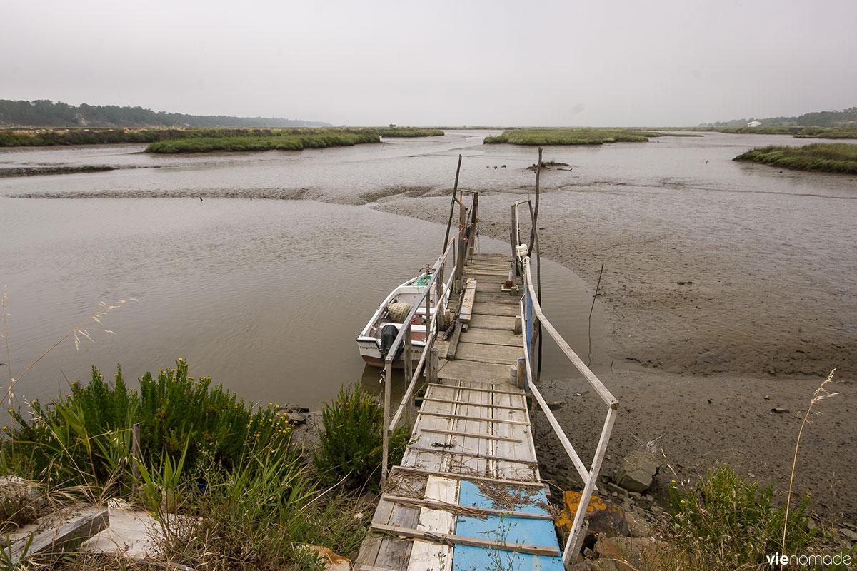 Estuaire du Sado