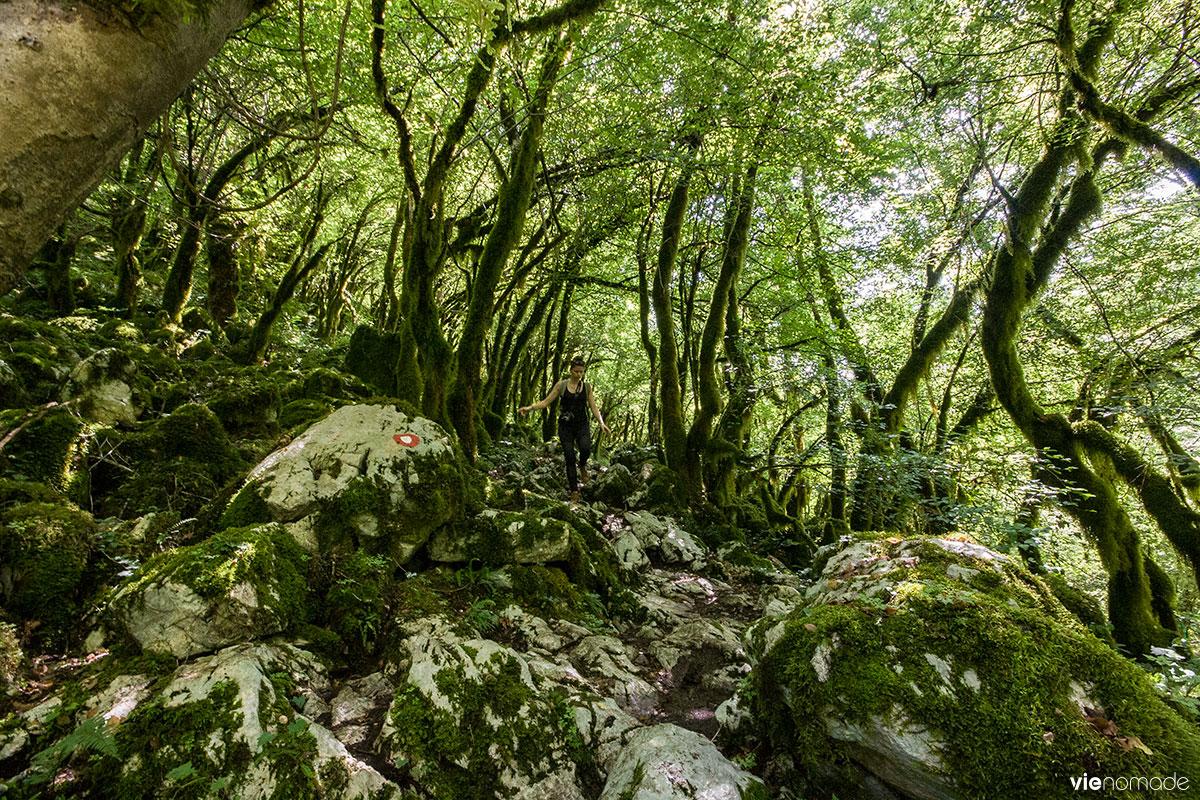Rando dans le canyon Mrtvica
