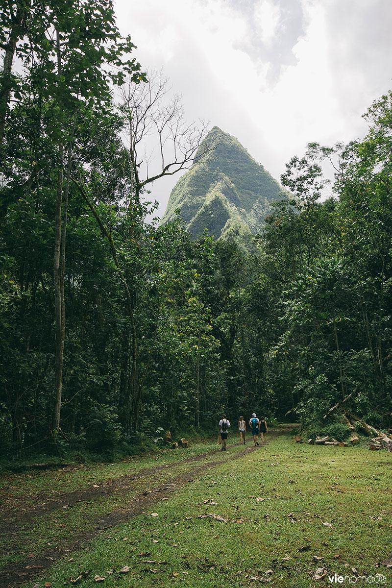 Montagne à Tahiti