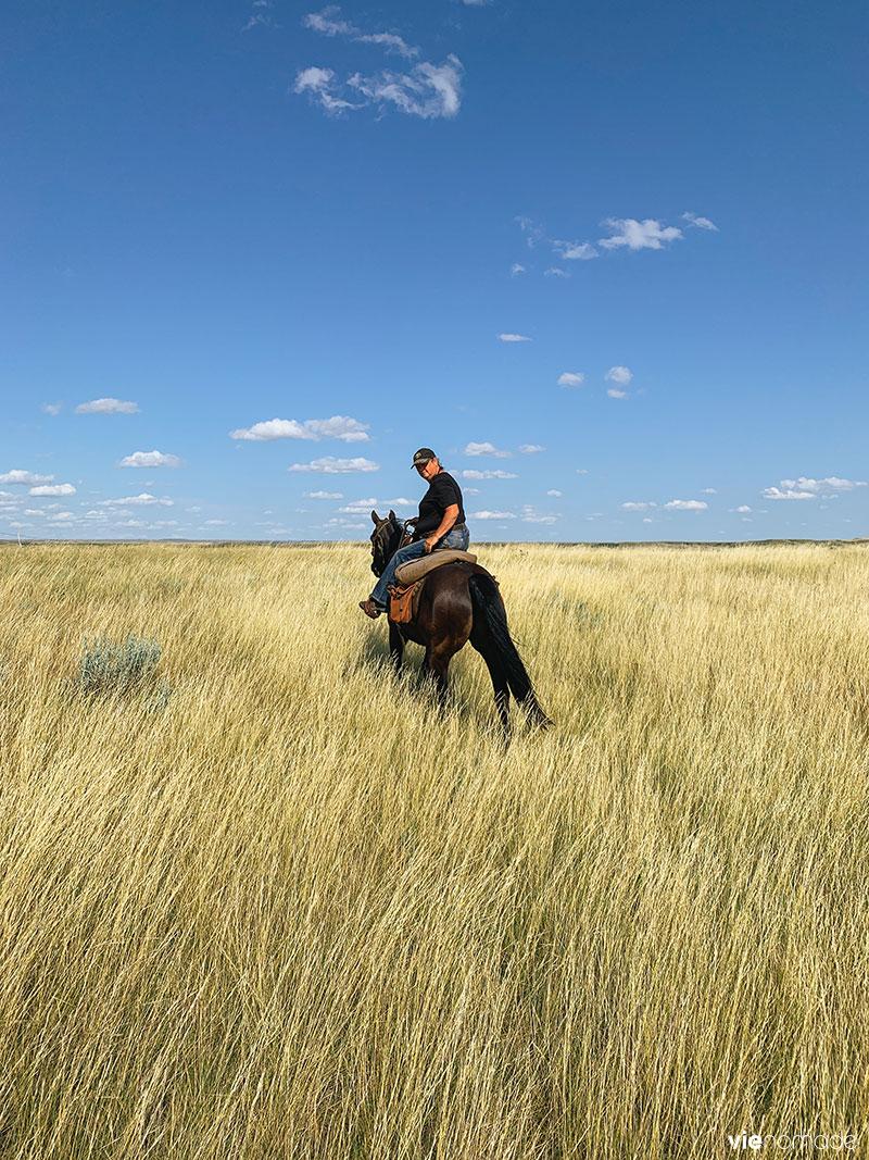 Teresa du Gold Willow Ranch, Saskatchewan