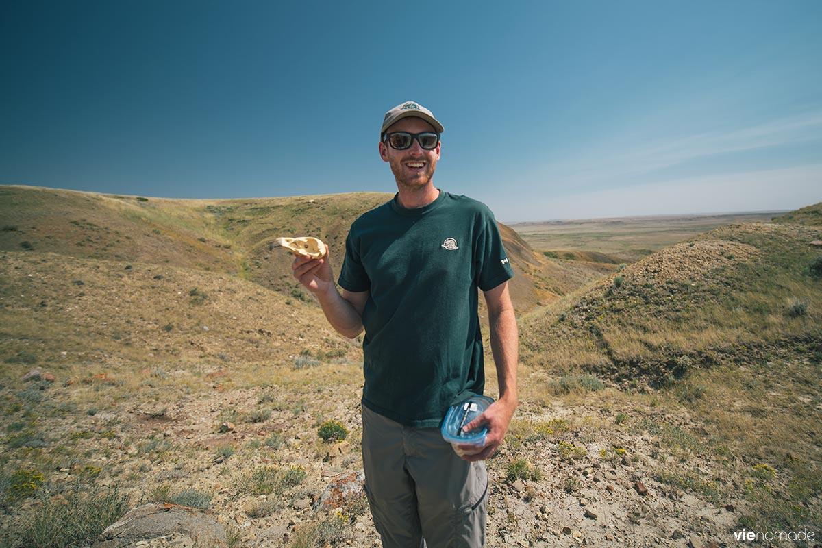 Michael Painchaud à la 70 Mile Butte: l'aigle royal