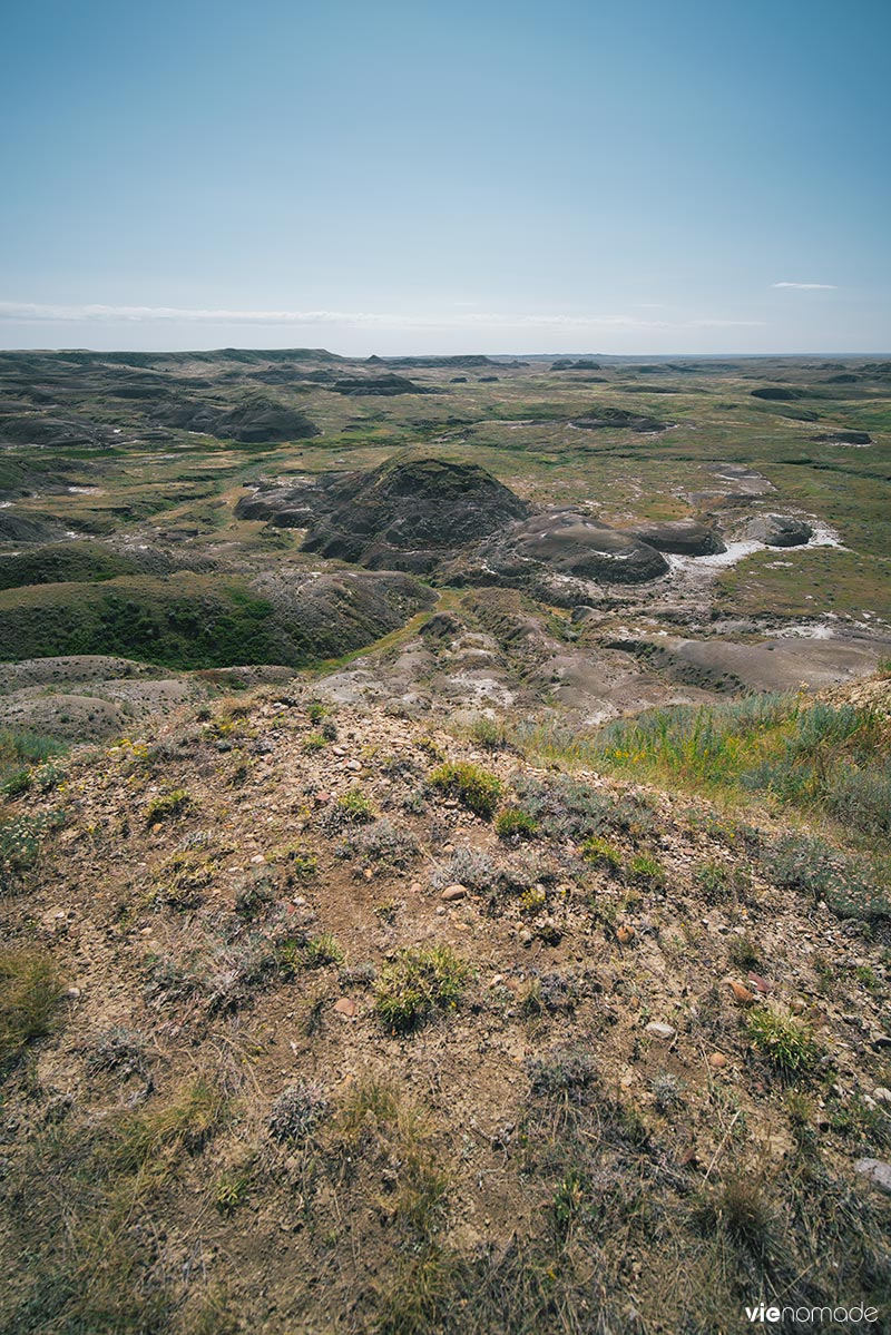 Parc national des prairies, saskatchewan