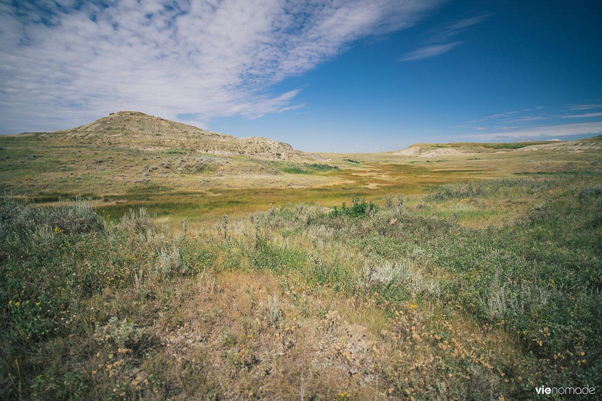 Ouest canadien: paysage typique des prairies